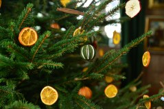 SGP_9147 Susan Guy_Baddesley Christmas w