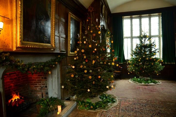 SGP_9155 Susan Guy_Baddesley Christmas w