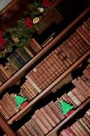 SGP_9162 Susan Guy_Baddesley Christmas w