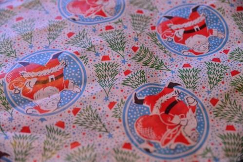 SGP_9167 Susan Guy_Baddesley Christmas w