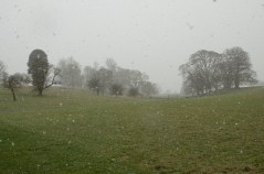 Susan Guy_Calke Abbey_Snow_House_04.03.16_16 w