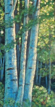 "Birch Clump, acrylic on texturized canvas, 20"" x 40"", 2009 SOLD"