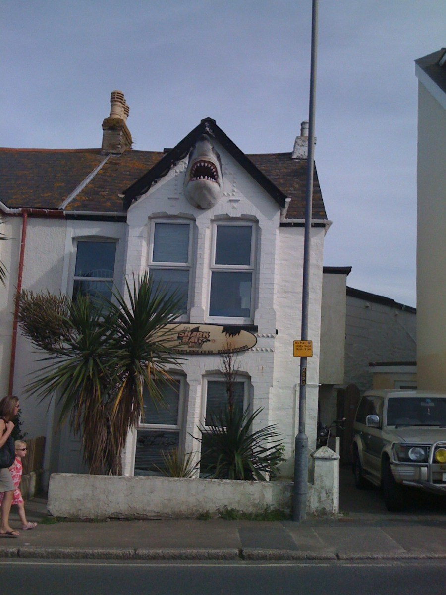 House with a shark's head on wall