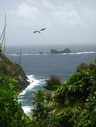 Little Tobago vogeleiland