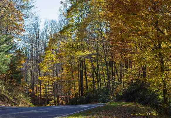 Autumn on Willis Gap Road, Virginia.