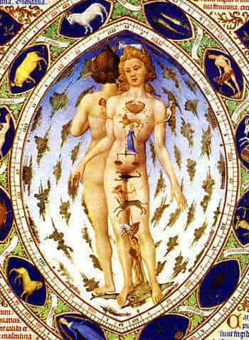 zodiac-man-1413-16-2