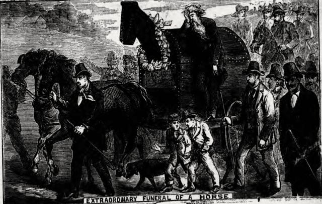 Screengrab via British Newspaper Archives.