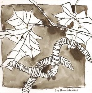 Zwei Würmer - Zeichnung von Susanne Haun - 20 x 20 cm - Tusche auf Bütten