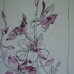 Orchideenzweig - Zeichnung von Susanne Haun - Tusche auf Bütten - 40 x 30 cm