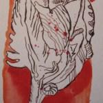 Tulpe - Zeichnung von Susanne Haun - 20 x 10 cm - Tusche und Aquarell auf Aquarellkarton