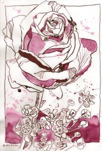 Bordeaux Rose - Zeichnung von Susanne Haun - 30 x 20 cm - Tusche auf Bamboo Papier