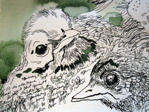 Die Offenbarung im Gefieder der Amsel - Ausschnitt Rolle von Susanne Haun