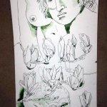 Ausschnitt Rolle Magnolien und Schädel - 90 x 40 cm - Zeichnung von Susanne Haun