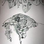 Spatz - Ausschnitt aus der Rolle - Zeichnung von Susanne Haun