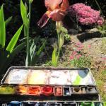 Schwertlilie mit meinem Aquarellkasten - Foto von Susanne Haun