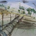 Weinberg im Spreewald - Aquarell von Susanne Haun - 38 x 56 cm