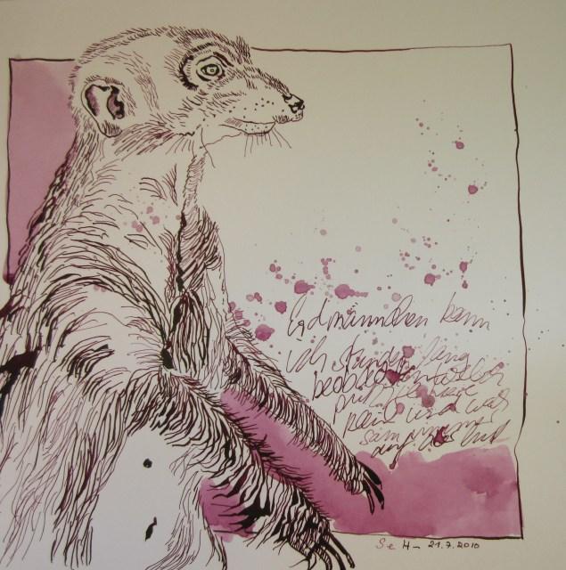Erdmännchen - Zeichnung von Susanne Haun - 25 x 25 cm - Tusche auf Bütten