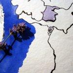 Entstehung einzelne Lavendelblüte Ausschnitt 2 mit Größenvergleich von Susanne Haun