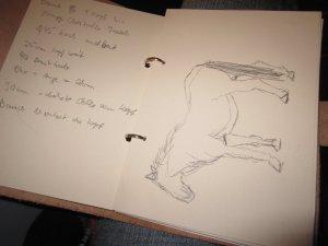 Mein Skizzenringbuch - Foto von Susanne Haun