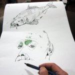 Trotz der langen Pause, fällt es mir leicht, weiter zu zeichnen - Entstehung Rolle von Susanne Haun