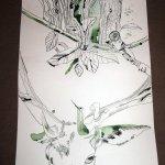 Hirsch und Olivenblätter und Olivenbaum auf Zeichnung von Susanne Haun 1000 x 40 cm