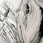 Ausschnitt Rolle Teil Olivenbaum - Zeichnung von Susanne Haun - 1000 x 40 cm - Tusche auf Bütten