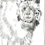 Kerberos der Höllenhund - Zeichnung von Susanne Haun - 22 x 17 cm - Tusche auf Bütten