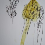 Eine dritte Blüte entsteht - wieder arbeite ich parallel - Susanne Haun