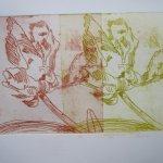 Das ist es! - Tulpen von zwei Platten - 10 x 25 cm - Radierung von Susanne Haun