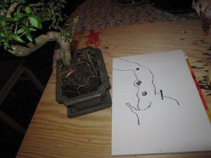 Zuerst zeichne ich die Komposition mit Carput Mortum Tusche - Foto von Susanne Haun