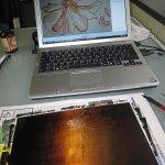 Ich zeichne meine Anemonen in den Wachs - Susanne Haun
