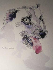 Hund Version 1 - Zeichnung von Susanne Haun - 40 x 30 cm - Tusche auf Bütten