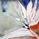 Strilitzie Version 2 - Zeichnung von Susanne Haun - 20 x 20 cm - Tusche auf Bütten