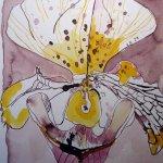 Frauenschuh - Zeichnung von Susanne Haun - 24 x 32 cm - Tusche auf Bütten