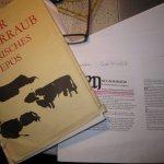 """Mein Buch """"Der Rinderraub"""" nach Thomas Kinsella daneben mein Arbeitsblatt von Ernst Windisch"""