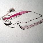 Entstehung der ersten Magnolienblüte - Zeichnung von Susanne Haun