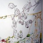 Ausschnitt Ithas Insel, der Frosch - Zeichnung von Susanne Haun - 40 x 100 cm - Tusche auf Bütten