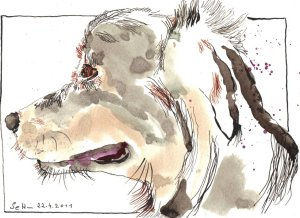 Die ruhige Abby - Zeichnung von Susanne Haun - 17 x 24 cm - Tusche auf Bütten