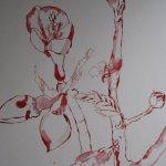 Blütenzweig - Zeichnung von Susanne Haun - 40 x 30 cm - Tusche auf Hahnemühle Toscana rau