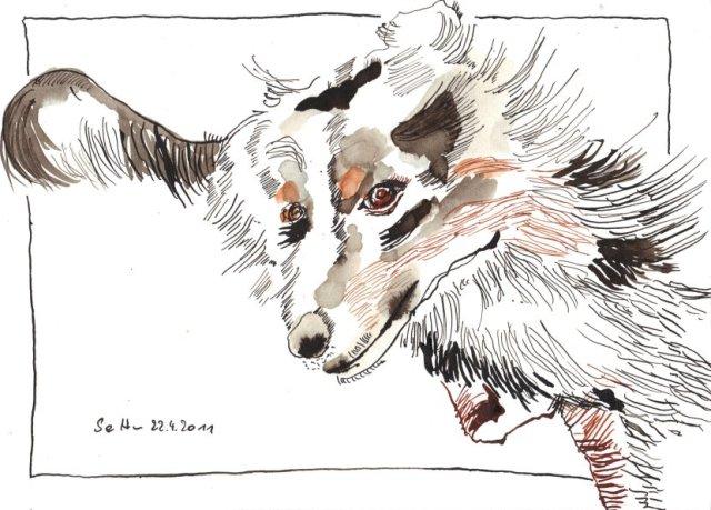 Die wilde Abby - Zeichnung von Susanne Haun - 17 x 24 cm - Tusche auf Bütten
