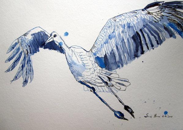 Storch - Zeichnung von Susanne Haun - 30 x 40 cm - Tusche auf Bütten