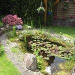 Teich in meines Elterns Garten - Foto von Susanne Haun