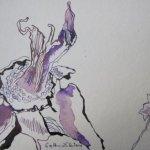Welkende Pfingstrose Vers. 3 - Zeichnung von Susanne Haun - 17 x 12 cm - Tusche auf Bütten