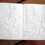 Skizzen Seerosen von Susanne Haun