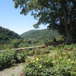 Klostergarten Neustift mit Blick über den Neckar - Foto von Susanne Haun
