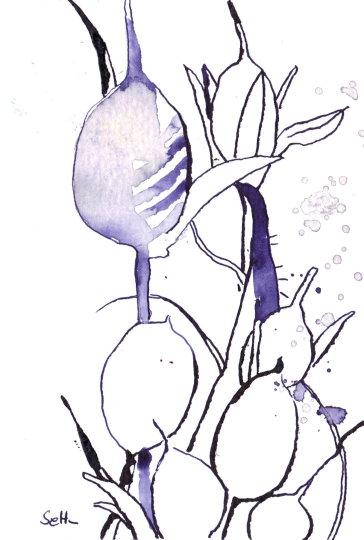 Lila/Aubergines Gewächs 2 - Zeichnung von Susanne Haun - 10 x 15 cm - Tusche auf Bütten