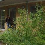 Mein neues Atelier liegt im Grünen in Reinickendorf / Heiligensee - Foto von Petra A. Bauer