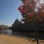 Es wird Herbst am Berliner Dom - Foto von Susanne Haun