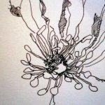 Entstehung Skizze Winteranenome von Susanne Haun