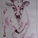 Kuh auf der Weide - Zeichnung von Susanne Haun - Tusche auf Bütten - 40 x 30 cm